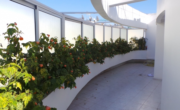 Appartement terrasse vente immobilier Casablanca